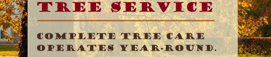 Fall Season Tree Service Indianapolis IN