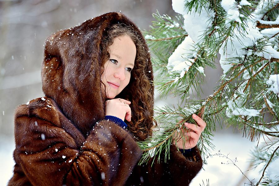 Winter Tree Service Indianapolis Indiana 317-783-2518